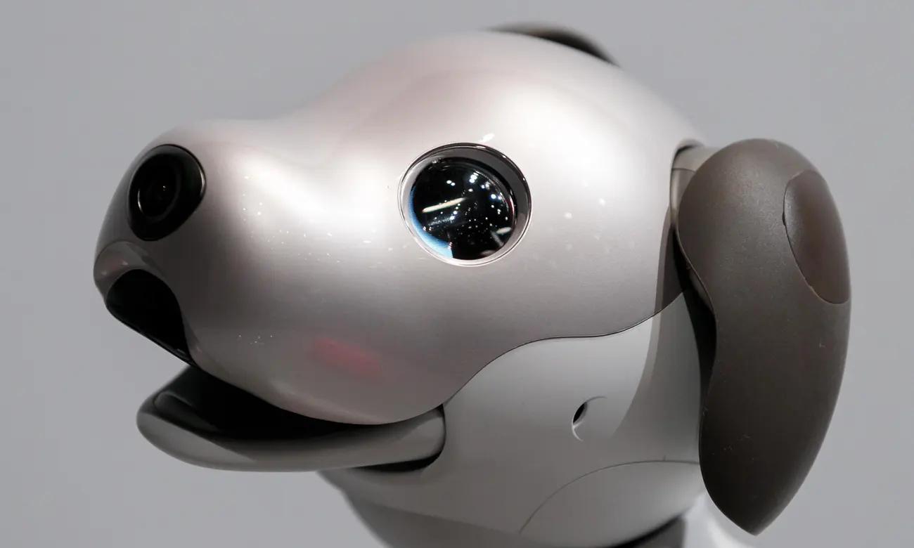 """Robotický pes Aibo má podle svých tvůrců """"skutečné emoce a instinkty"""""""